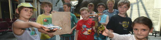 Ferienerlebnisse im Naturkundemuseum