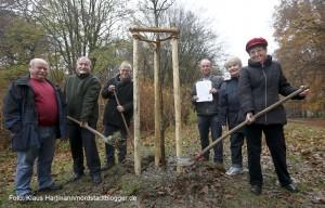 Freundeskreis pflanzt Baum des Jahres im Fredenbaumpark, einen Holzapfel