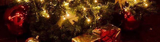 Das Team von Nordstadtblogger.de wünscht allen Leserinnen und Lesern schöne und besinnliche Weihnachten!