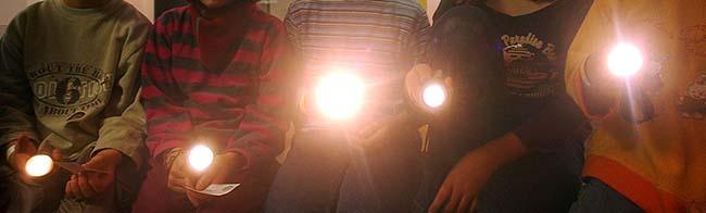 Taschenlampenführung im Naturkundemuseum