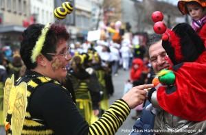 Rosenmontagszug 2014 auf der Münsterstraße. Begegnung zwischen Biene und Marienkäfer