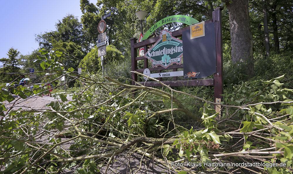 Sturm mit Gewitter verwüstetet Fredenbaumpark. Der Park ist vorläufig gesperrt