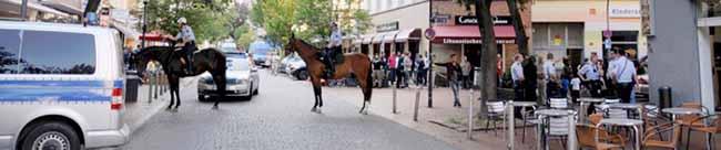Fotostrecke: Ein Dutzend Streifenwagen und zwei Polizeipferde bei Schlägerei auf der Münsterstraße