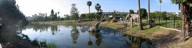 """""""La Brea"""": Sammlerkreis des Naturkundemuseums """"reist"""" thematisch von der Nordstadt nach Los Angeles"""