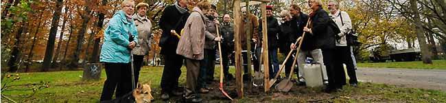 Freundeskreis Fredenbaumpark pflanzt den Baum des Jahres