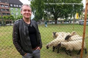 Kunstaktion: NOToperation, Schafe auf dem Borsigplatz von Frank Bölter. Frank Bölter