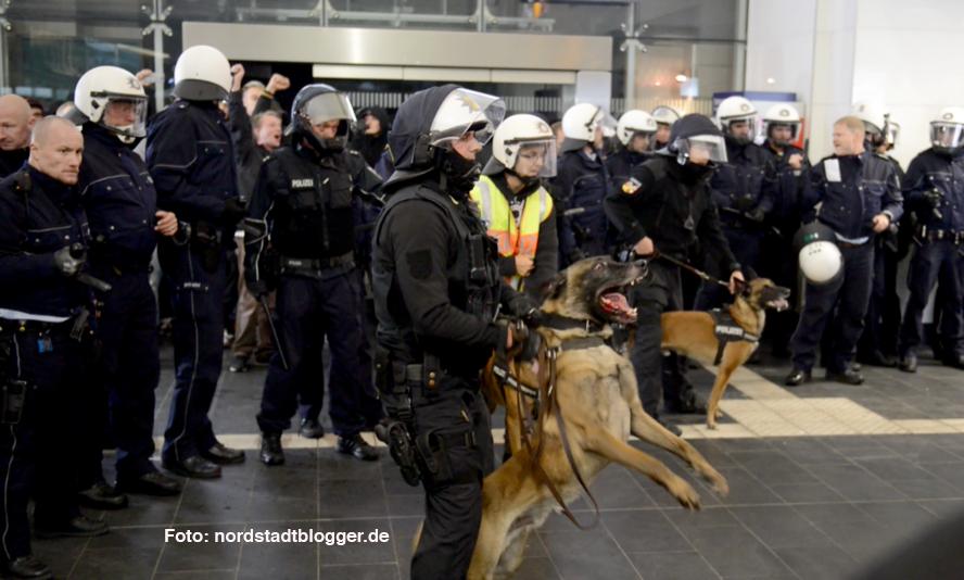 Die Polizeihundeführer hatten teilweise die Maulkörbe ihrer Tiere abgenommen. Eine Frau wurde in die Hand gebissen.