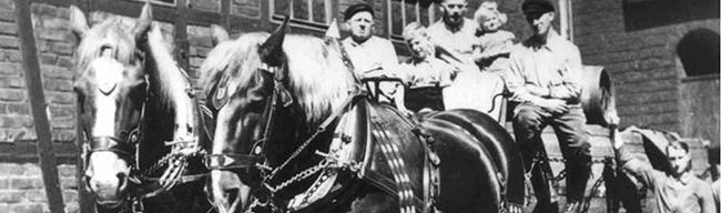 SERIE (7): Es begann die Stunde Null nach dem Zweiten Weltkrieg – Von Pferden und Kartoffelschalen