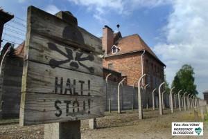 Esther Bejarano überlebte die Hölle von Auschwitz-Birkenau. Foto: Alex Völkel