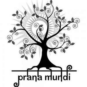 Veranstaltungen Borsig 11. Prana Mundi