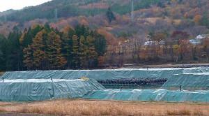 Die kontaminierte Erde steht in Säcken in der Landschaft. Eine Entsorgung gibt es nicht.