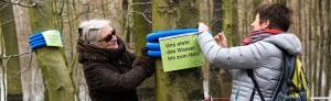 Aktion des Freundeskreises Hoeschpark wegen der Überschwemmung in Brügmanns Hölzchen. Fotos: Simon Bierwald