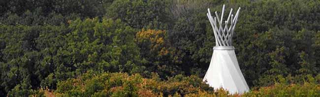 Der Fredenbaumpark muss gesperrt werden – Starker Befall mit dem Eichenprozessionsspinner in Dortmund