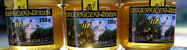 In der Imker-AG der Förderschule summt es wieder – dank vieler Spenden: 150 Gläser sind voll mit Nordstadt-Honig