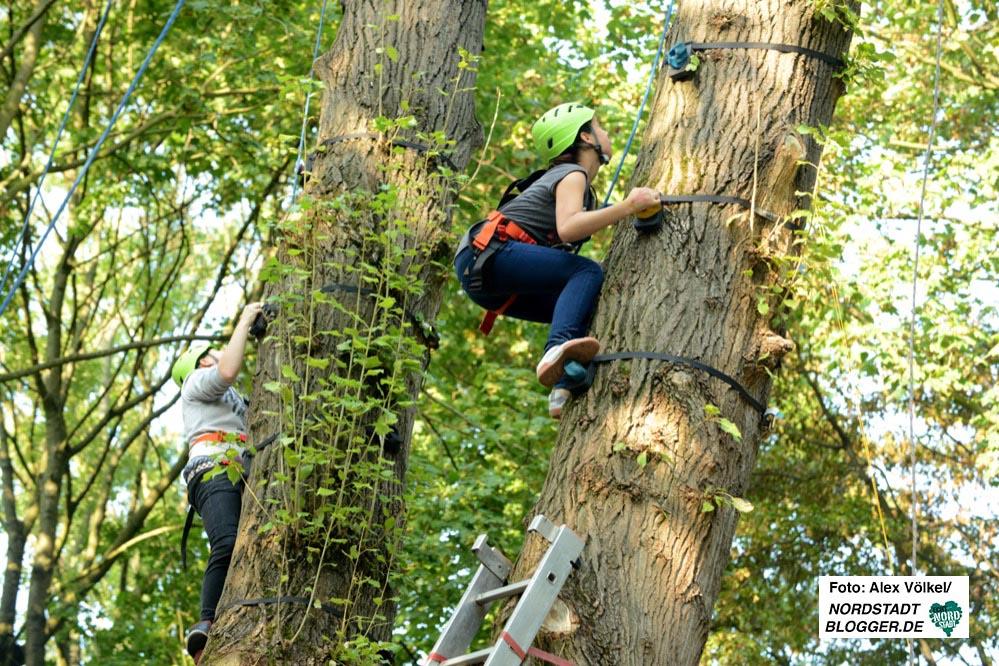 Die Kletterangebote sind genau das richtige um sich auszutoben oder die eigenen Grenzen auszuloten. Betreut werden die Kids von erfahrenen TrainerInnen. Foto: Alex Völkel