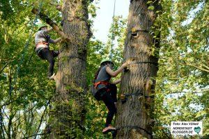 Von April bis Oktober können Immer freitags die Kletterbäume und sonntags der Hochseilgarten im Big Tipi erobert werden. Archivfoto: Alex Völkel.