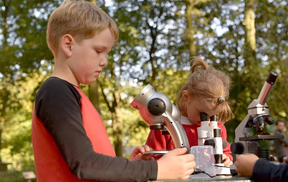 Mit den neuen Mikroskopen können sie nun die Bodentiere und Pflanzen untersuchen.