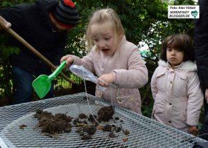 Mit Lupen und Lupengläsern untersuchen die Kinder die Insekten.