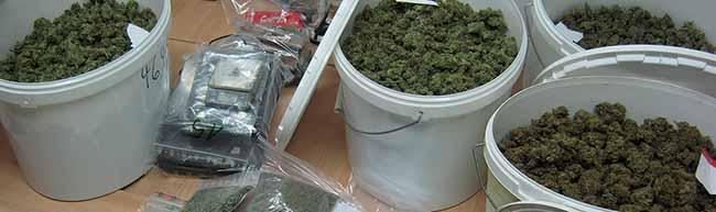 Zivilfahnder der Wache Nord nehmen Drogendealer fest: Kiloweise Marihuana und Haschisch sichergestellt