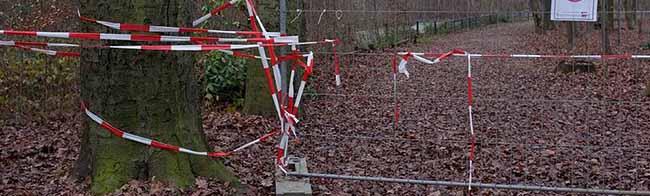Hoeschpark-Verein wünscht sich neue Bäume und eine funktionierende Entwässerung für die Grünanlage