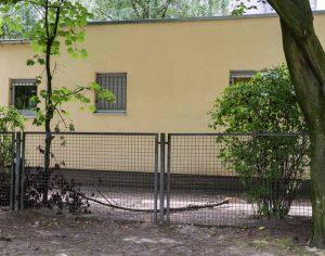 Die Zäune des Außengeländes sind nicht hoch genug und durchlässig.