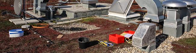 Das neue Grün für Dortmund wächst auf dem Dach– Eine Pflicht zur Dachbegrünung stößt auf ein geteiltes Echo