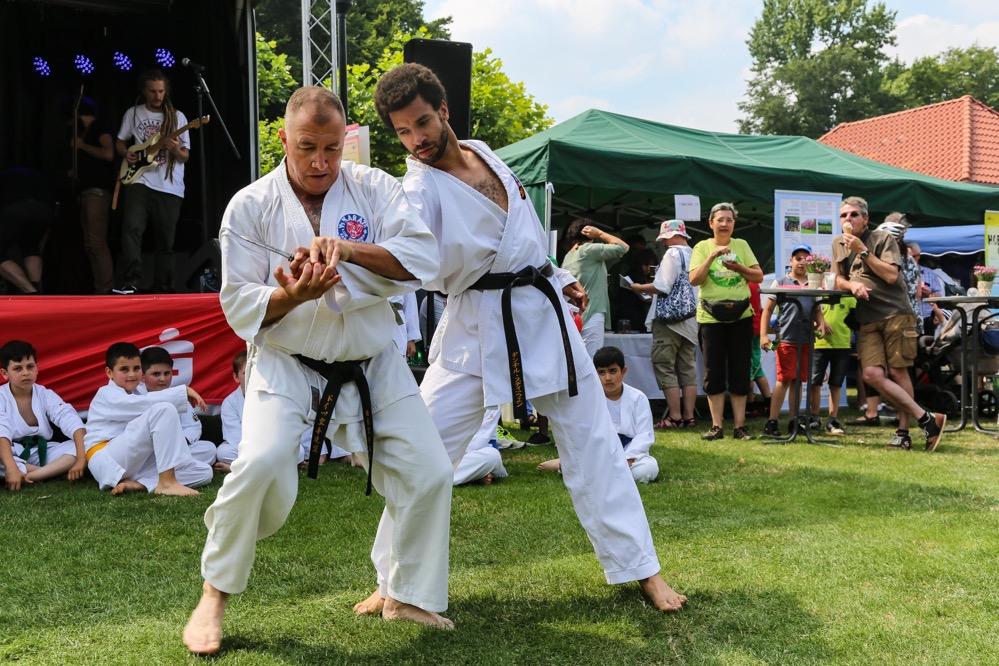 Sportliche Aktivitäten und musikalische Angebote standen beim Hoeschparkfest im Mittelpunkt.