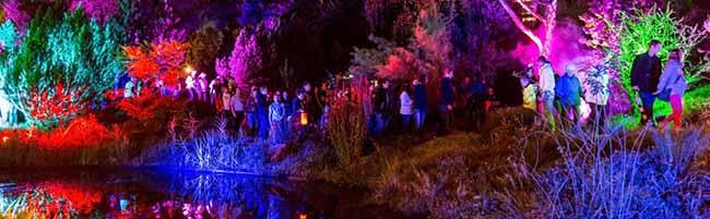 Geburtstags-Lichterfest: 1.900 Meter Lichterketten sorgen für märchenhafte Stimmung im Westfalenpark Dortmund