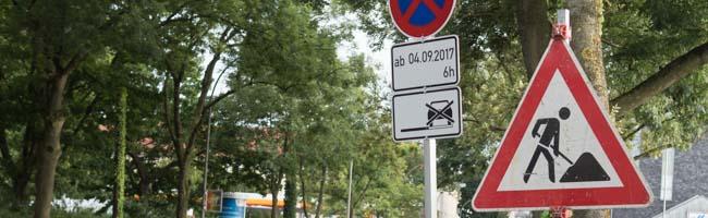 Kahlschlag an der Schützenstraße: Neben 27 Bäumen kommen auch die teils mit Efeu bewachsenen Oberleitungsmasten weg