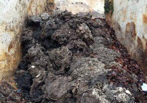 So sieht der Müll aus, wenn er aus dem Abwasser gefischt wurde. Foto: Ilias Abawi/EG