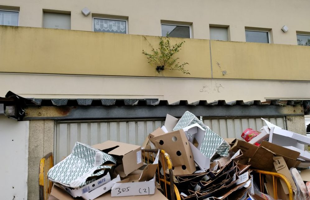 Massive Missstände gibt es bei der Immobilie in der Feldherrnstraße.