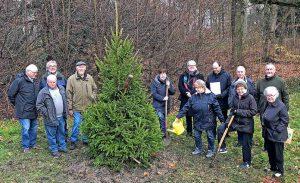 Die Gemeine Fichte ist Baum des Jahres 2017. Der Freundeskreis Fredenbaumpark e.V. liess ein Exemplar pflanzen. Fotos: Joachim vom Brocke