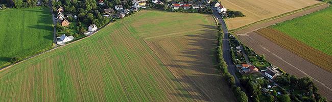 Von Hundeauslauf bis Futterpflanzen-Ernte in Dortmund: Neuer Landschaftsplan schafft einheitliche Regelungen