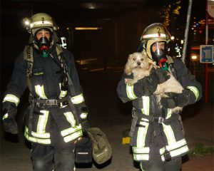 Die Einsatzkräfte haben zu oft mit Respektlosigkeit und Behinderung ihrer Arbeit zu kämpfen. Foto: Feuerwehr Dortmund