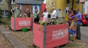 "Hochbeete des ""Querbeet Hörde"" Projektes am Hörder Neumarkt. Fotos: Gerd Wüsthoff"