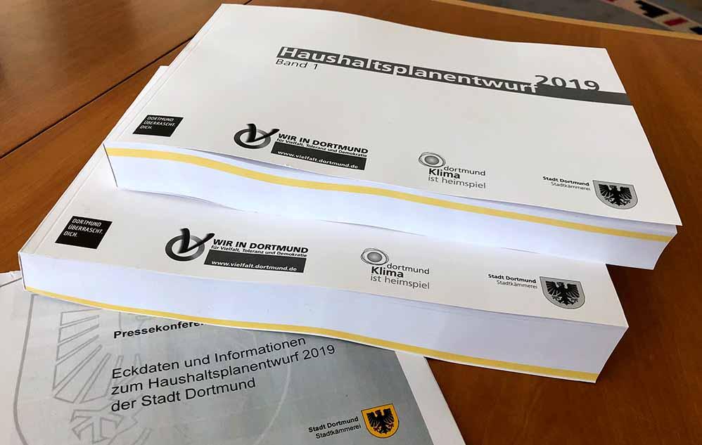 Stadtkämmerer Jörg Stüdemann hat den zweibändigen Haushaltsplanentwurf für 2019 eingebracht.