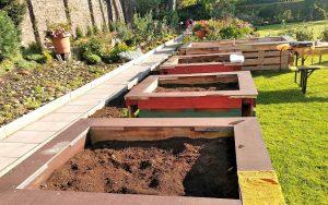 """Es wurde garantiert """"nachhaltiges"""" Saatgut verwandt. Jetzt ist Winterpause. Der nächste Jahrgang folgt im Frühjahr."""