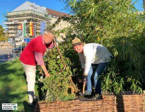 """Die Initiative """"Garten statt ZOB"""" kümmert sich seit Jahren um ein kleines Beet. Foto: Alex Völkel"""