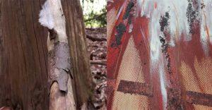 Die Natur spielt in den Arbeiten beider Künstlerinnen die Hauptrolle.