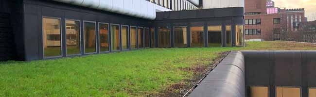 """Tomaten auf den Westfalenhallen? Zucchini vom Rathausdach? – Tierschutzpartei möchte Vorreiterrolle bei """"Urban Farming"""""""