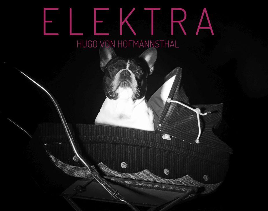 Titelbild zu Theaterstück Elektra in der Inszenierung von Remo Philipp. Foto: R. Philipp.