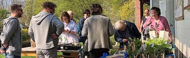 Der erste Saatgut- und Pflanzentauschtag lockte 200 BesucherInnen in die Nordstadt – erfolgreiche Kooperation