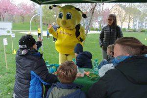 """Osterhasenrallye mit 340 Kindern Am 11. April organisierte der Runden Tisch """"BVB und Borsigplatz"""" auf der Heroldwiese in der Straße Oestermärsch nach der erfolgreichen Premiere im Vorjahr die zweite Osterhasenrallye. """"Diesmal wurden die Erwartungen übertroffen, mit so viel Beteiligung hatten wir nicht gerechnet"""", freute sich Veit Hohfeld, der für den Verein Stadtteil-Schule Dortmund e.V. am Runden Tisch sitzt. Er ist zudem Sprecher des Gesprächskreises Borsigplatz. Dieser hatte mit Vertreter/innen von Stern im Norden e.V., des Mädchen und Frauentreffs der Stadtteil-Schule, der ConSol Dortmund gGmbH, der Vincenz-Jugendhilfe, den Kings Kids, des Familienzentrums Dürener Straße und den städtischen Streetworkern einen Stationen-Lauf organisiert. Alle Kinder, die diesen absolviert hatten, bekamen eine Osterüberraschung, gespendet von der Fanshop Sweets GmbH & Co. KG, Herten. 340 Kinder belegten mit einer Laufkarte, dass sie die neun Stationen erfolgreich absolviert hatten. Hier gab es vom Kinderschminken über Dosenwerfen, Graffiti sprayen bis zum Torwandschießen diverse Spielaktionen. Zur Freude der Kinder gratulierte dazu die eigens angereiste Biene """"Emma"""". Der """"Runde Tisch BVB und Borsigplatz"""" besteht aus den folgenden Mitgliedern: Borsigplatz VerFührungen, Borussia Dortmund, Freundeskreis Hoeschpark, Gewerbeverein Borsigplatz, Hoesch-Museum, Kirche Heilige Dreifaltigkeit, Kocatepe Moschee, Stadtteil-Schule Dortmund, Evangelische Lydia- Kirchengemeinde, Machbarschaft Borsig 11, Fleischerei Zimmermann, GrünBau, St. Vincenz Jugendhilfe-Zentrum, Stiftung Soziale Stadt und Quartiersmanagement Nordstadt."""