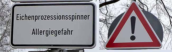 Experten im Klinikum Dortmund geben Erste-Hilfe-Tipps für den Kontakt mit Eichenprozessionsspinnerraupen