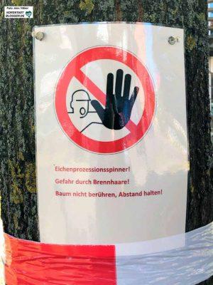 Die größten Teile des Hoeschparks sind bis zum Fest wieder begehbar. Foto: Alex Völkel