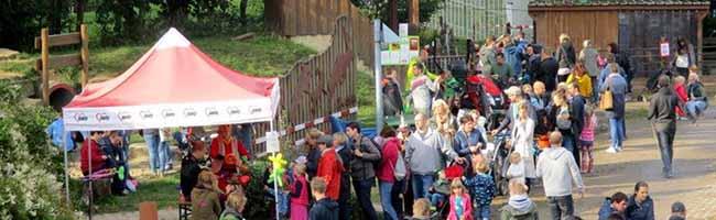 Inklusives Spielen: Endspurt für ein Generationenkarussell auf dem Schultenhof Dortmund – noch fehlen 8000 Euro