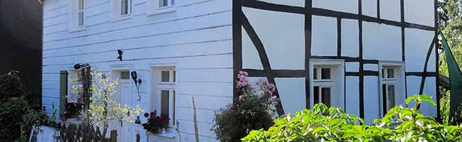 Angenehmes und klimatisiertes Wohnen in einer Rarität aus Holz: Die Schüruferstraße 246 ist das Denkmal des Monats