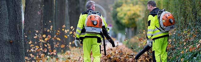 Im Herbst hat die Laubbeseitigung bei der EDG Vorrang – es wird mit bis zu 5.000 Tonnen Laub in Dortmund gerechnet