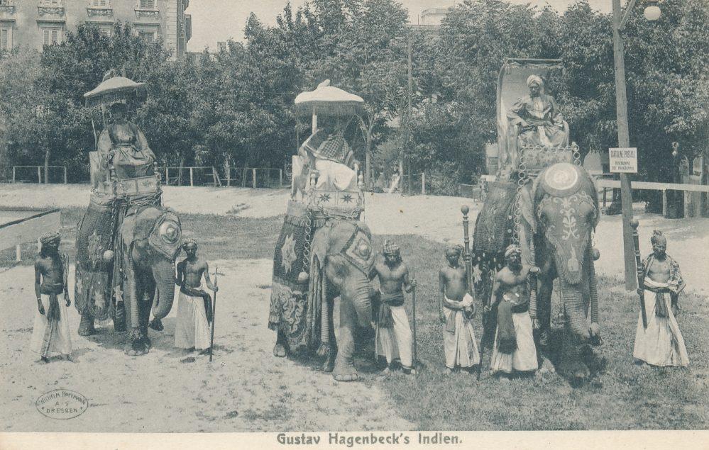 Hagenbecks Indien-Schau: Elefanten (Sammlung Klaus Winter)