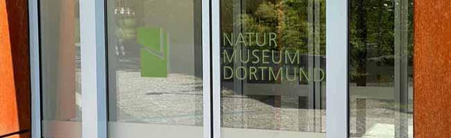 """Neuer Name, neues Konzept – das bisherige Museum für Naturkunde in der Nordstadt heißt künftig """"Naturmuseum"""""""